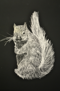 Silver Squirrel by Carter Pickering